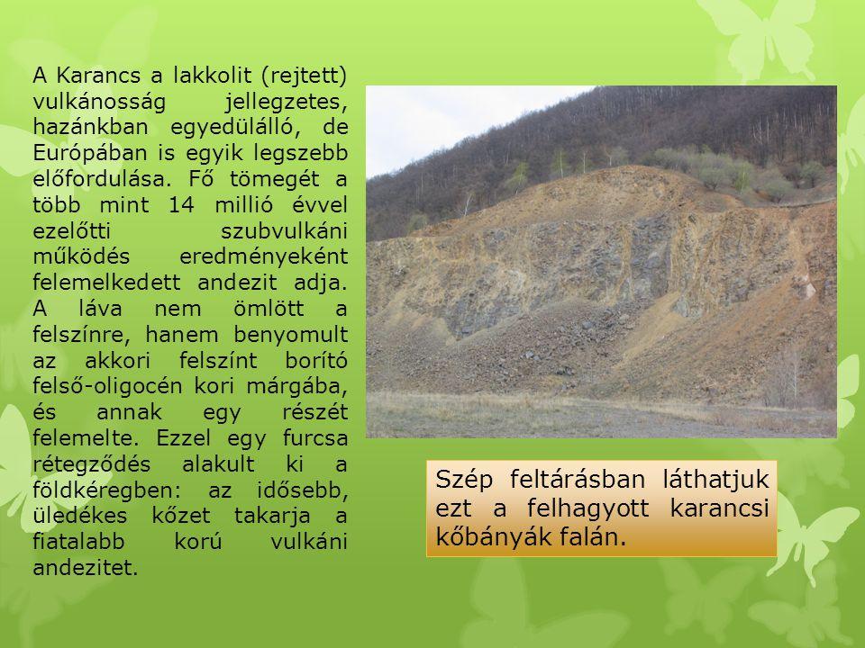 Szép feltárásban láthatjuk ezt a felhagyott karancsi kőbányák falán.