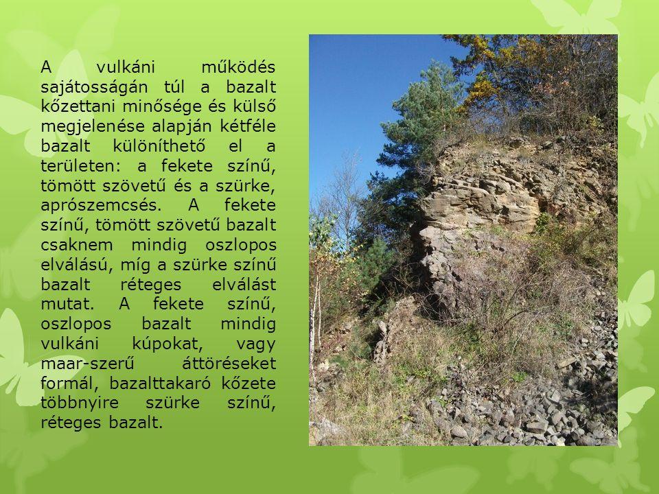 A vulkáni működés sajátosságán túl a bazalt kőzettani minősége és külső megjelenése alapján kétféle bazalt különíthető el a területen: a fekete színű, tömött szövetű és a szürke, aprószemcsés.