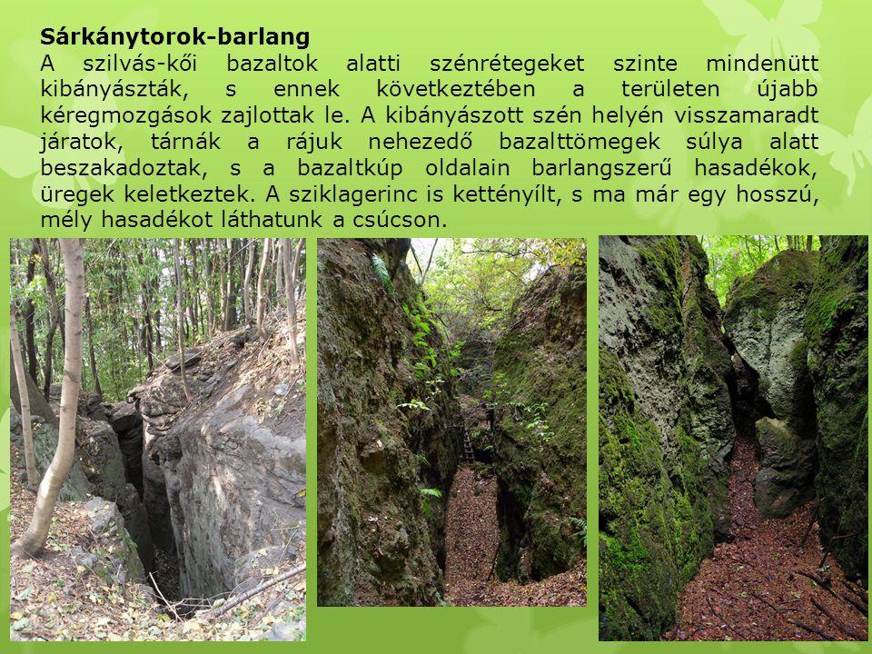 Sárkánytorok-barlang