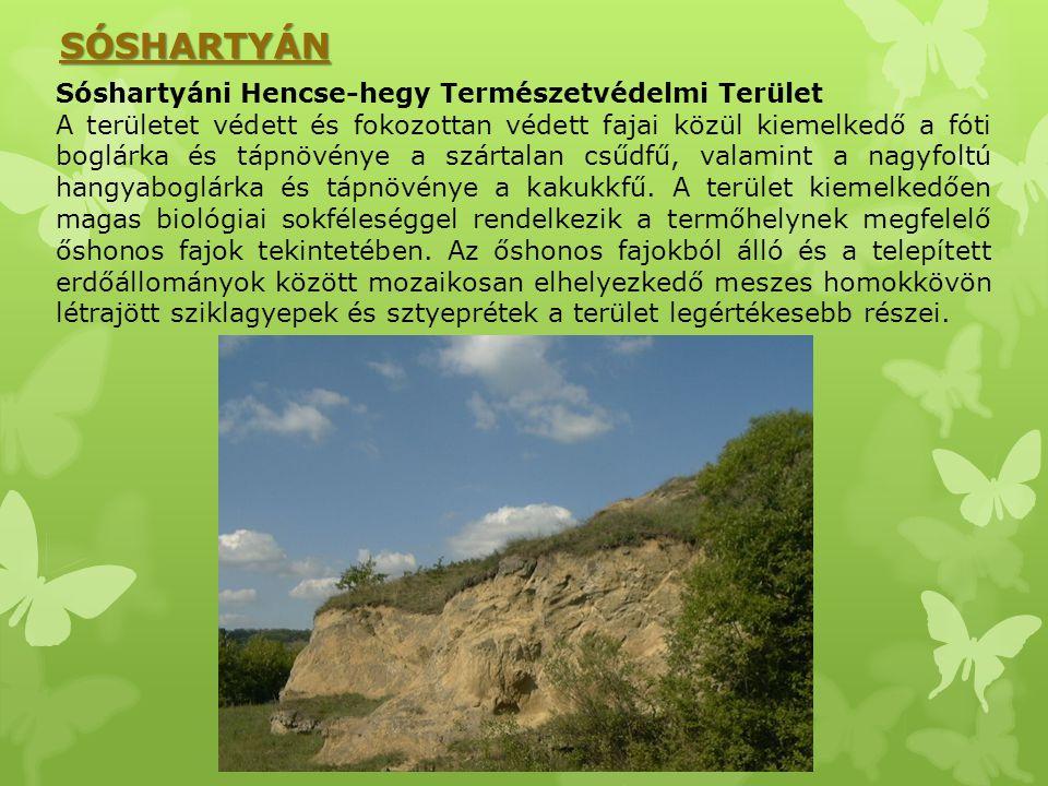 SÓSHARTYÁN Sóshartyáni Hencse-hegy Természetvédelmi Terület