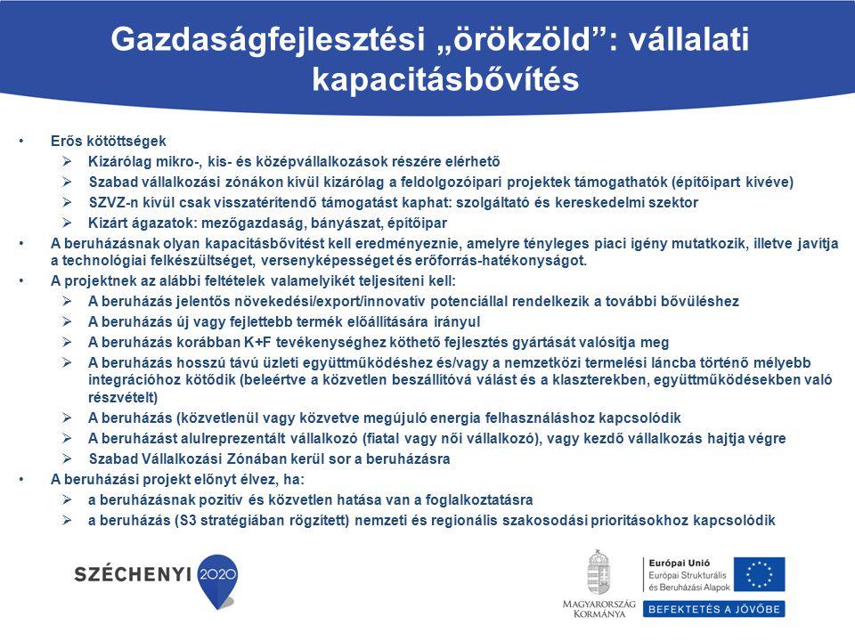 """Gazdaságfejlesztési """"örökzöld : vállalati kapacitásbővítés"""