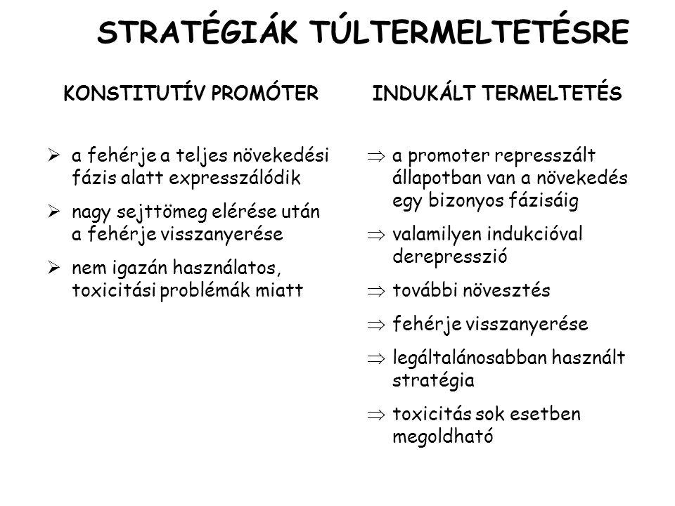 STRATÉGIÁK TÚLTERMELTETÉSRE