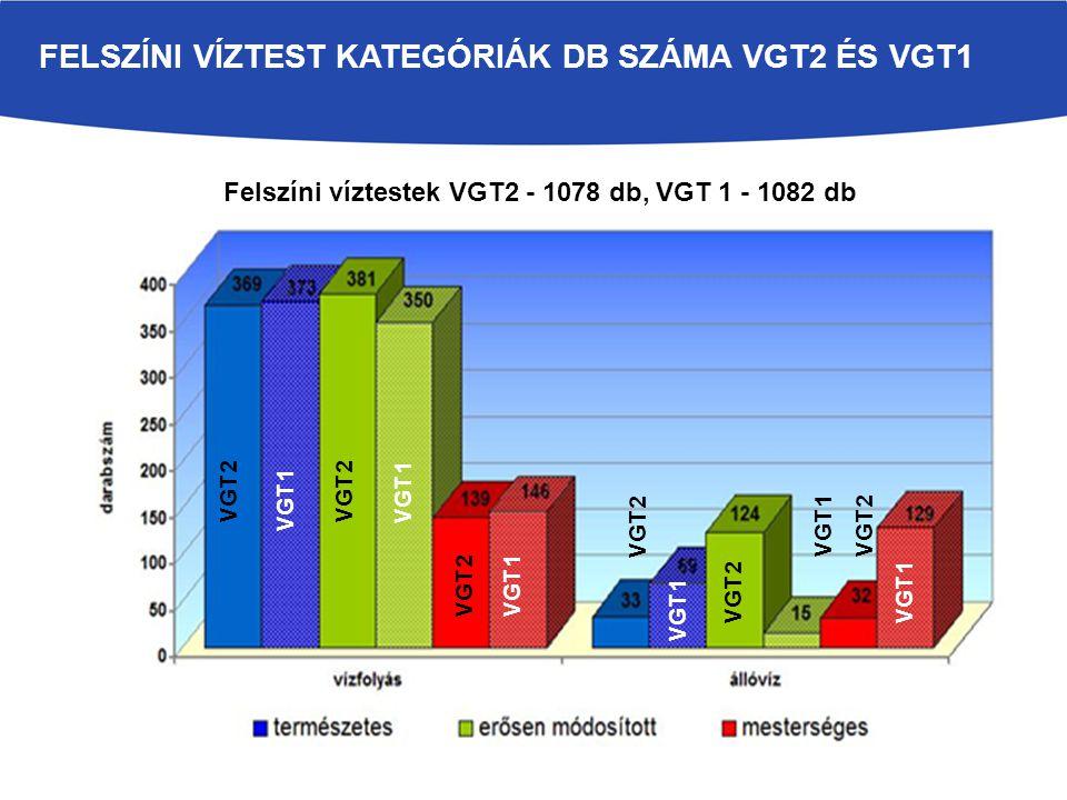 FELSZÍNI VÍZTEST KATEGÓRIÁK DB SZÁMA VGT2 ÉS VGT1