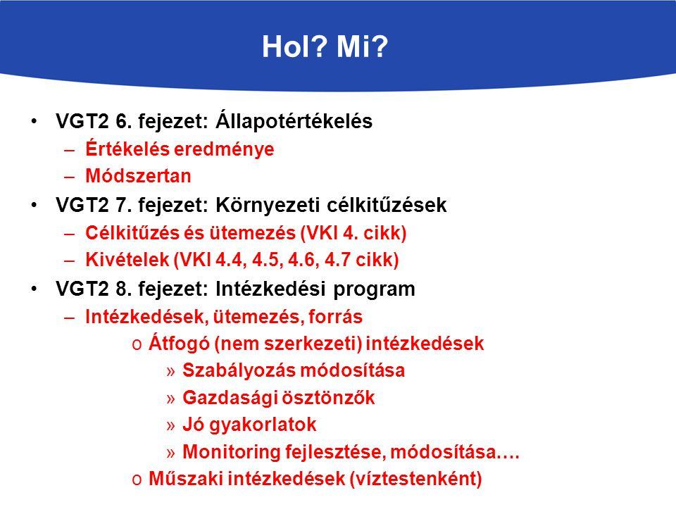 Hol Mi VGT2 6. fejezet: Állapotértékelés