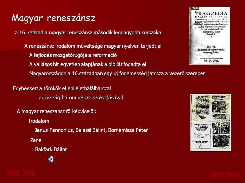 Magyar reneszánsz a 16. század a magyar reneszánsz második legnagyobb korszaka. A reneszánsz irodalom műveltsége magyar nyelven terjedt el.