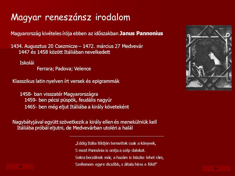 Magyar reneszánsz irodalom