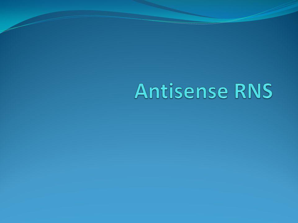 Antisense RNS