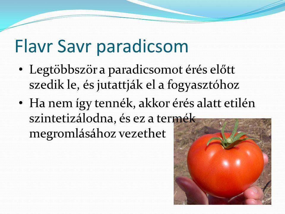 Flavr Savr paradicsom Legtöbbször a paradicsomot érés előtt szedik le, és jutattják el a fogyasztóhoz.