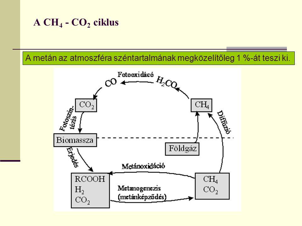 A CH4 - CO2 ciklus A metán az atmoszféra széntartalmának megközelítőleg 1 %-át teszi ki.