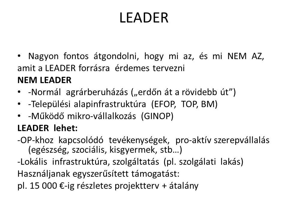 LEADER Nagyon fontos átgondolni, hogy mi az, és mi NEM AZ,