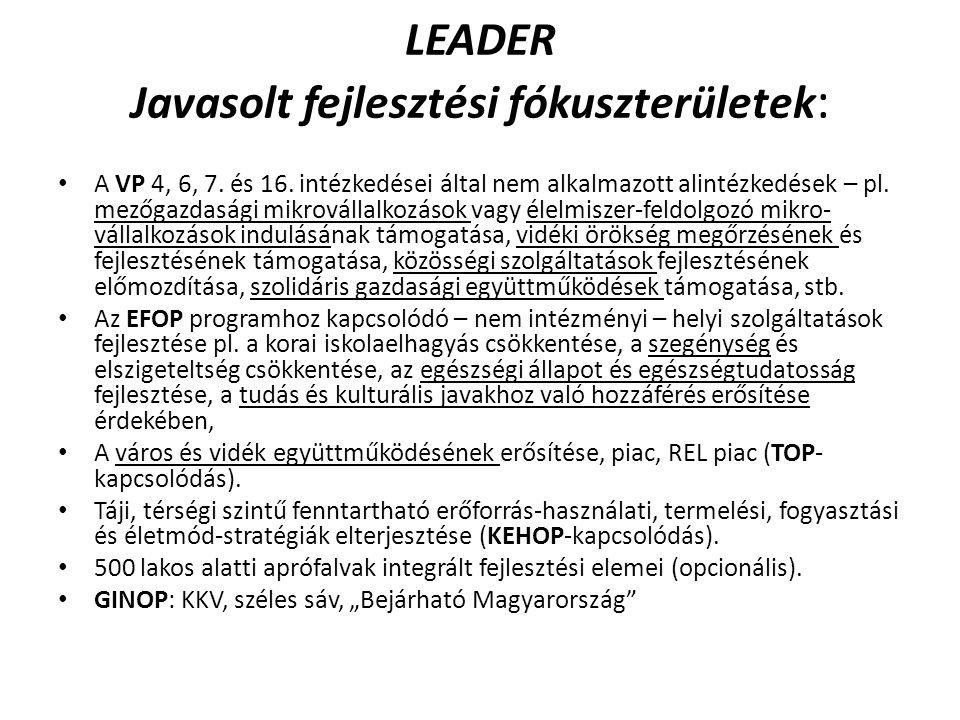 LEADER Javasolt fejlesztési fókuszterületek: