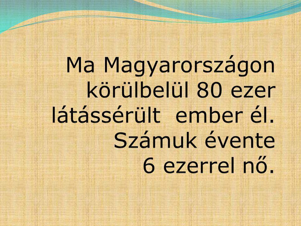 Ma Magyarországon körülbelül 80 ezer látássérült ember él