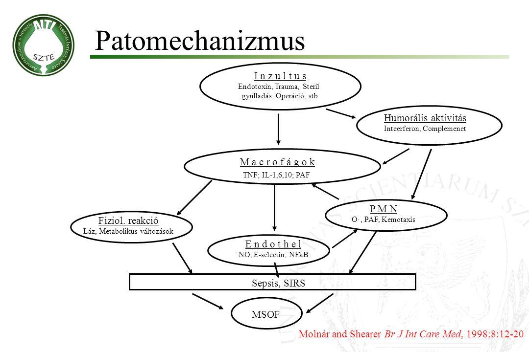 Patomechanizmus I n z u l t u s Humorális aktivitás