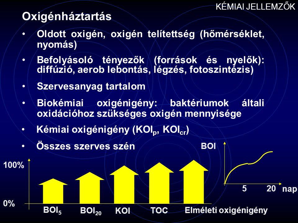 KÉMIAI JELLEMZŐK Oxigénháztartás. Oldott oxigén, oxigén telítettség (hőmérséklet, nyomás)