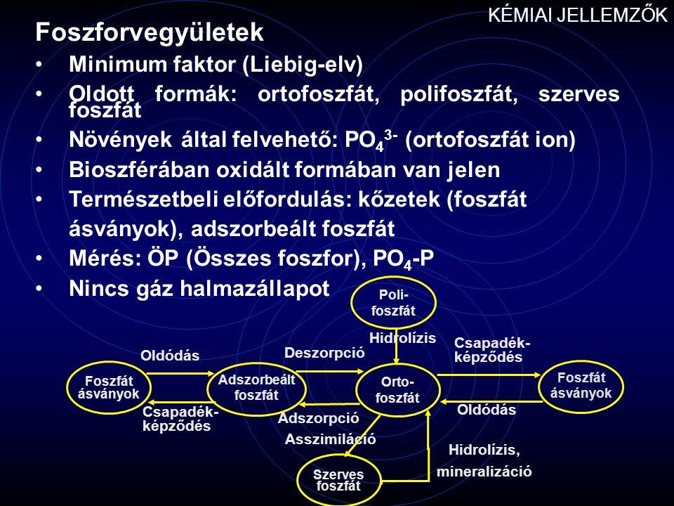 Foszforvegyületek Minimum faktor (Liebig-elv)