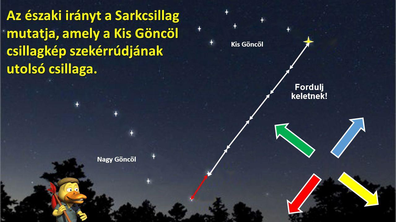 Az északi irányt a Sarkcsillag mutatja, amely a Kis Göncöl csillagkép szekérrúdjának utolsó csillaga.