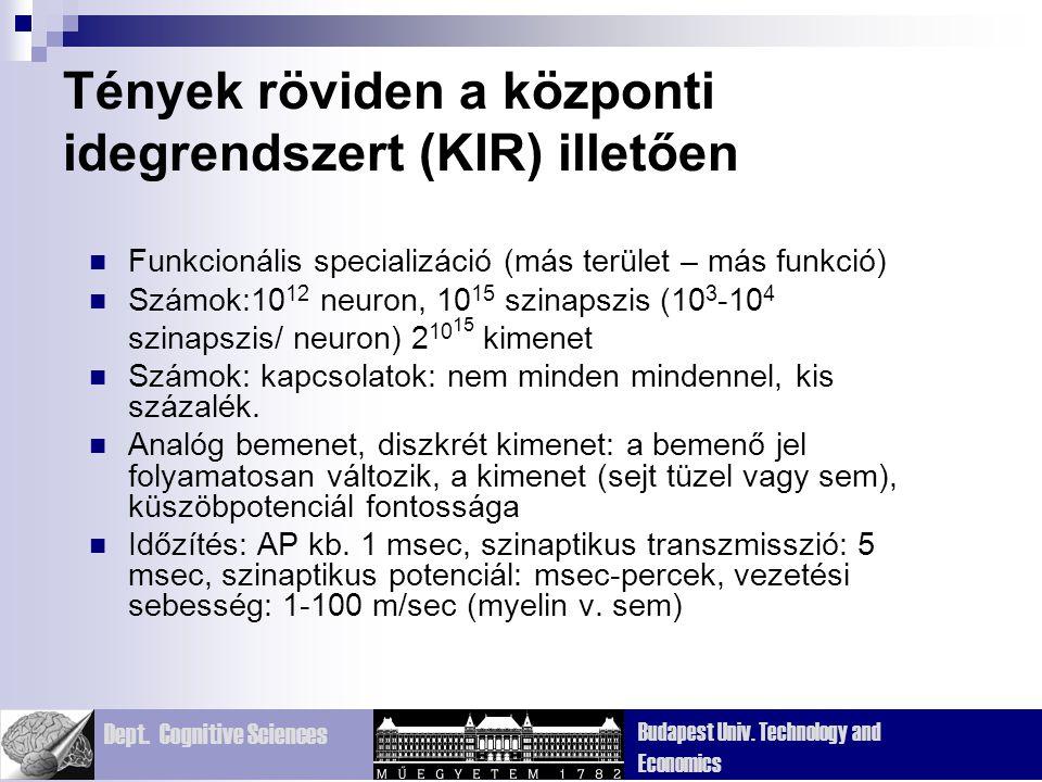 Tények röviden a központi idegrendszert (KIR) illetően