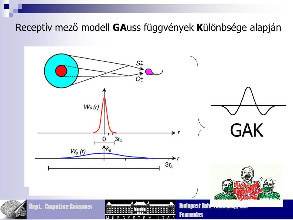 Receptív mező modell GAuss függvények Különbsége alapján