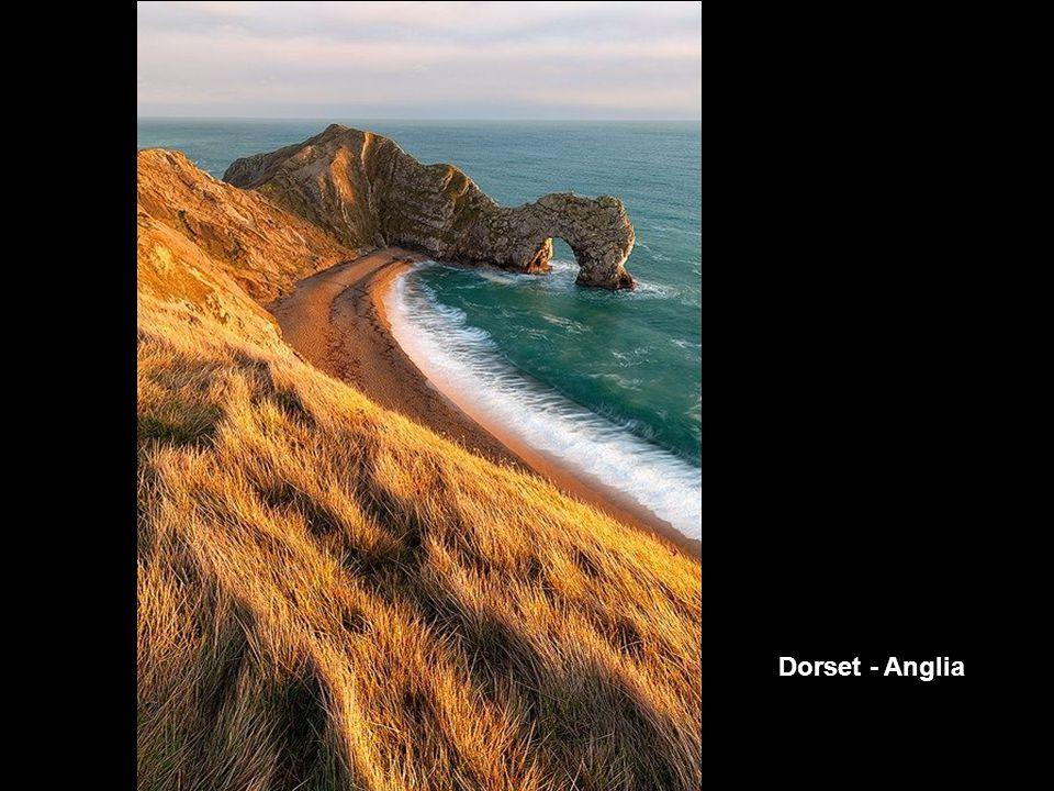 Dorset - Anglia