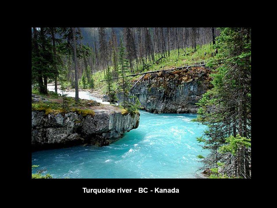 Turquoise river - BC - Kanada