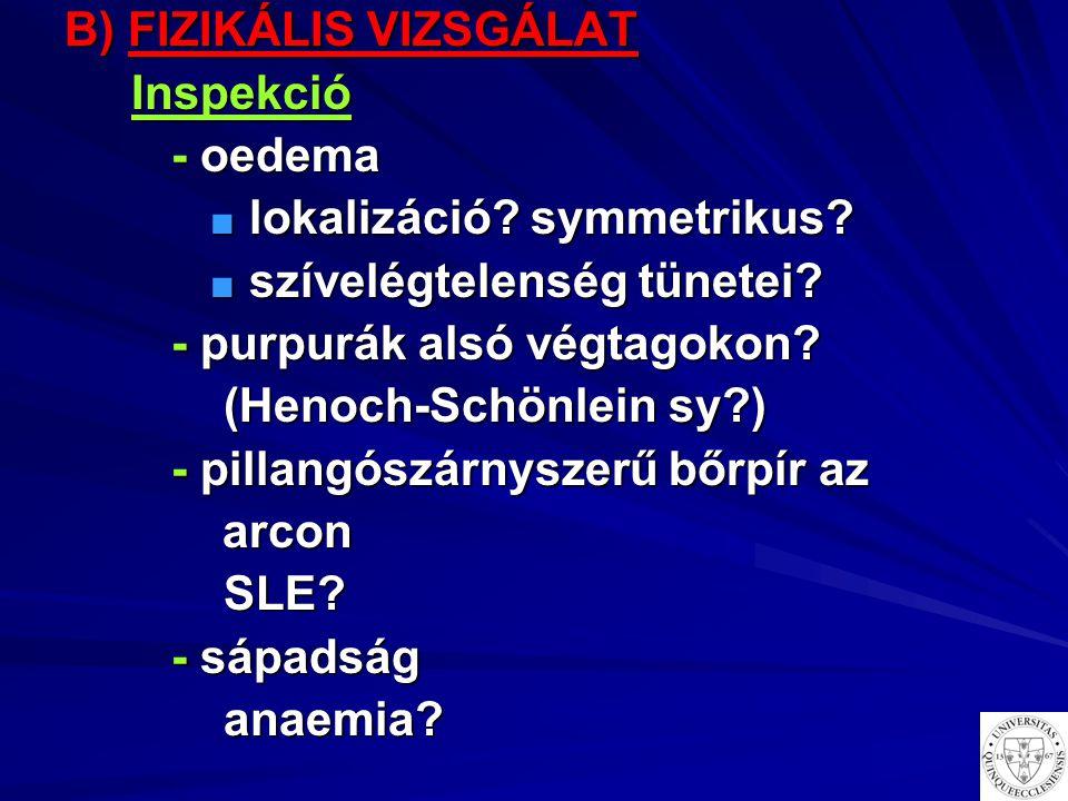 B) FIZIKÁLIS VIZSGÁLAT