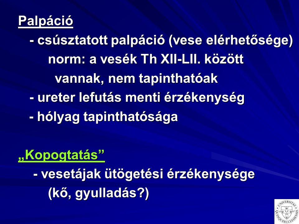 Palpáció - csúsztatott palpáció (vese elérhetősége) norm: a vesék Th XII-LII. között. vannak, nem tapinthatóak.