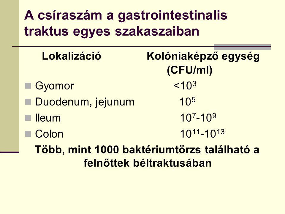 A csíraszám a gastrointestinalis traktus egyes szakaszaiban