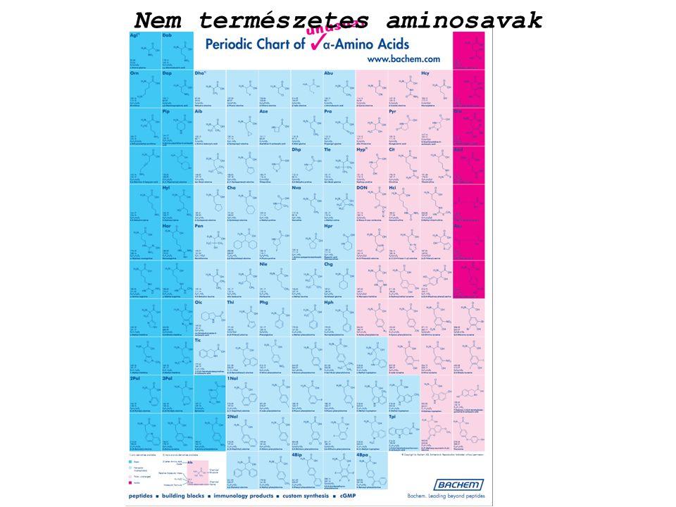 Nem természetes aminosavak