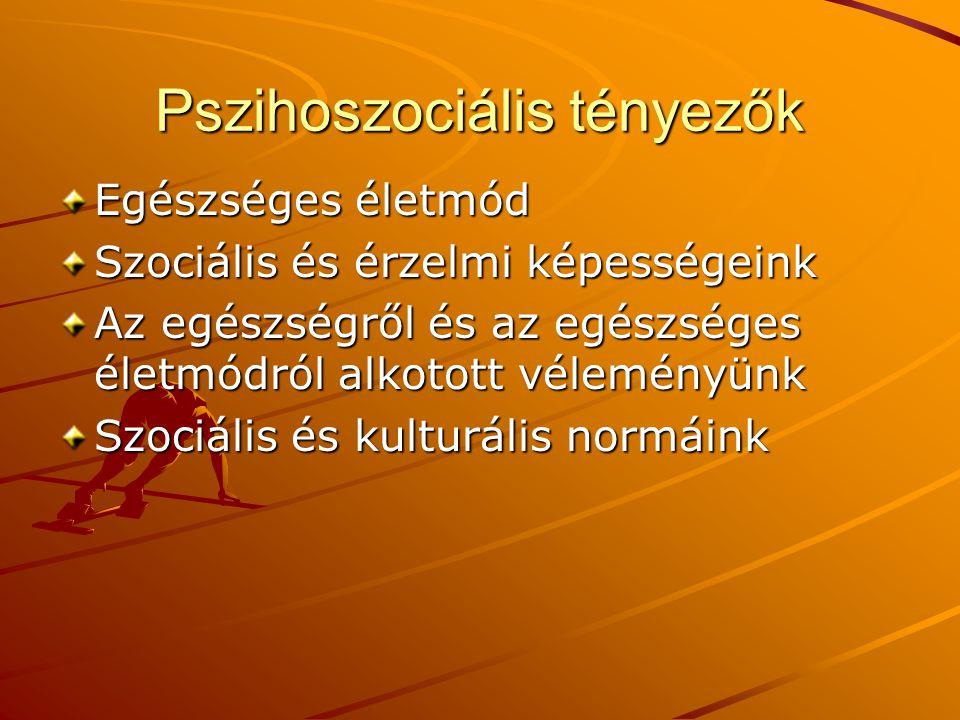 Pszihoszociális tényezők