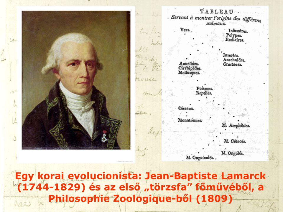 """Egy korai evolucionista: Jean-Baptiste Lamarck (1744-1829) és az első """"törzsfa főművéből, a Philosophie Zoologique-ből (1809)"""