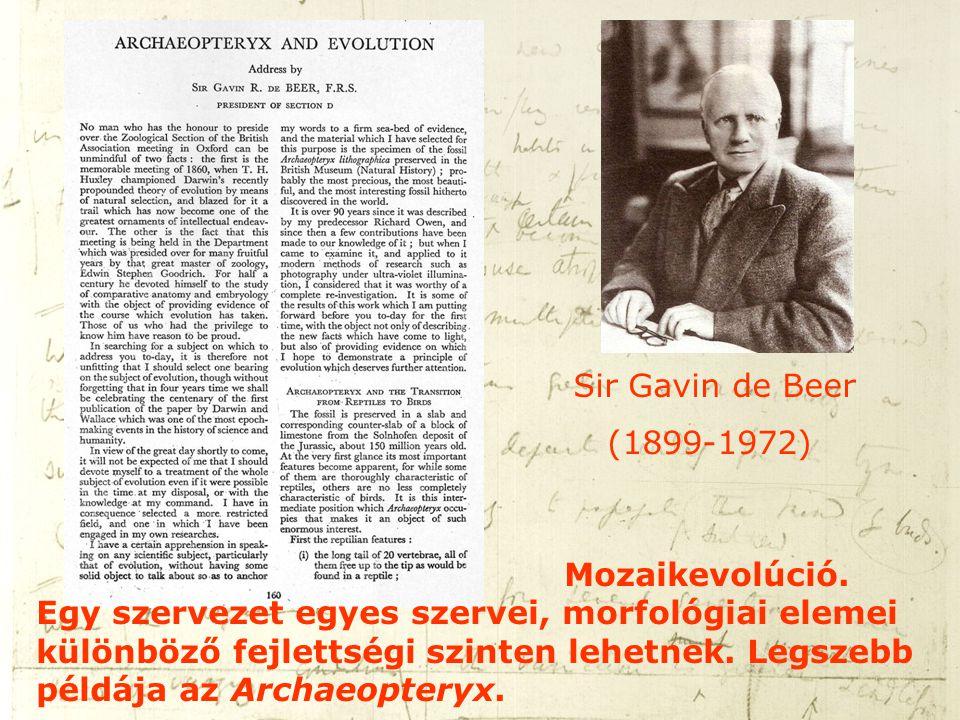 Sir Gavin de Beer (1899-1972)