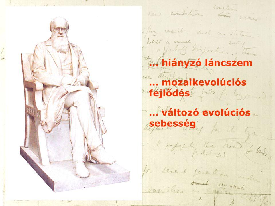 … hiányzó láncszem … mozaikevolúciós fejlődés … változó evolúciós sebesség