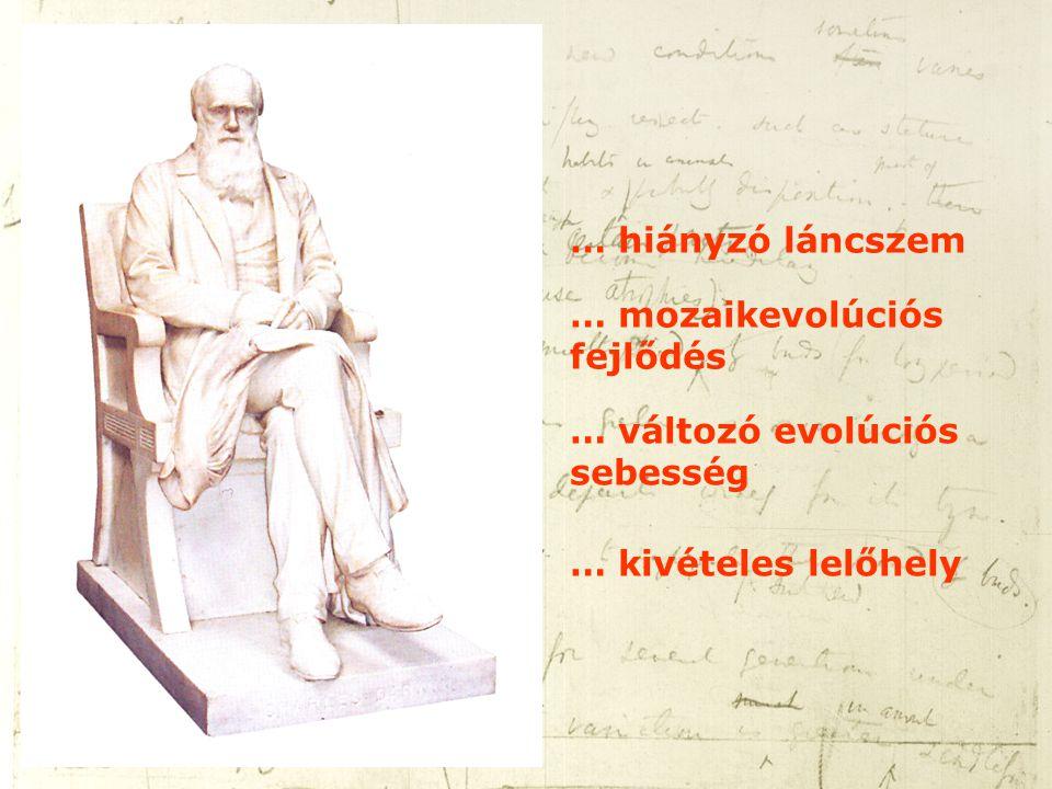 … hiányzó láncszem … mozaikevolúciós fejlődés … változó evolúciós sebesség … kivételes lelőhely