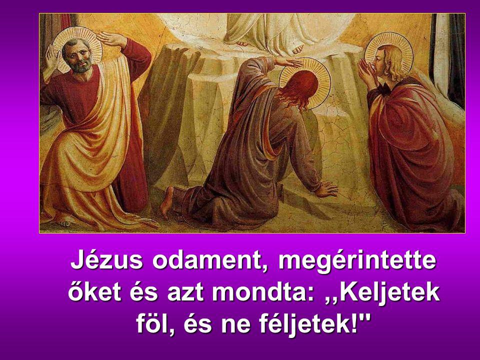 gfdd Jézus odament, megérintette őket és azt mondta: ,,Keljetek föl, és ne féljetek!