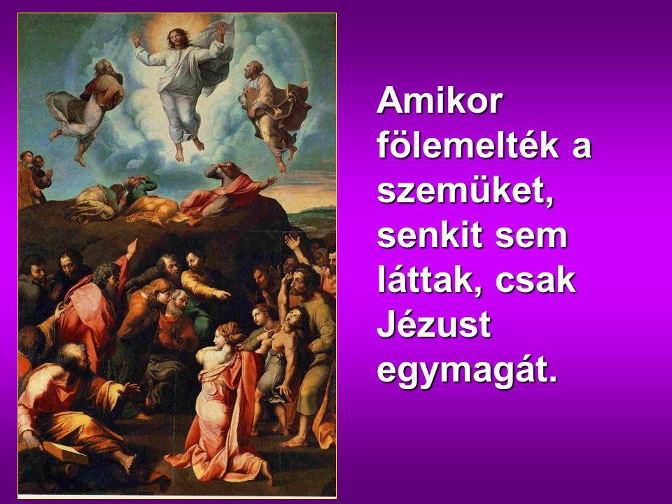 Amikor fölemelték a szemüket, senkit sem láttak, csak Jézust egymagát.