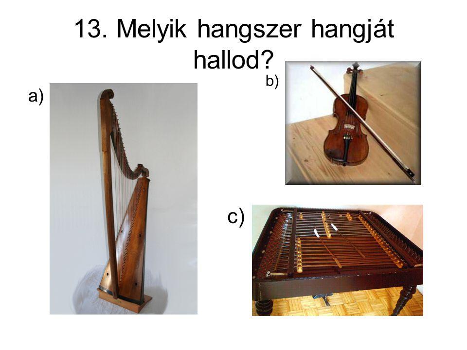 13. Melyik hangszer hangját hallod