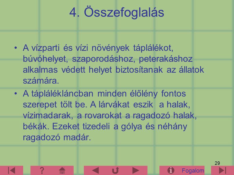 4. Összefoglalás