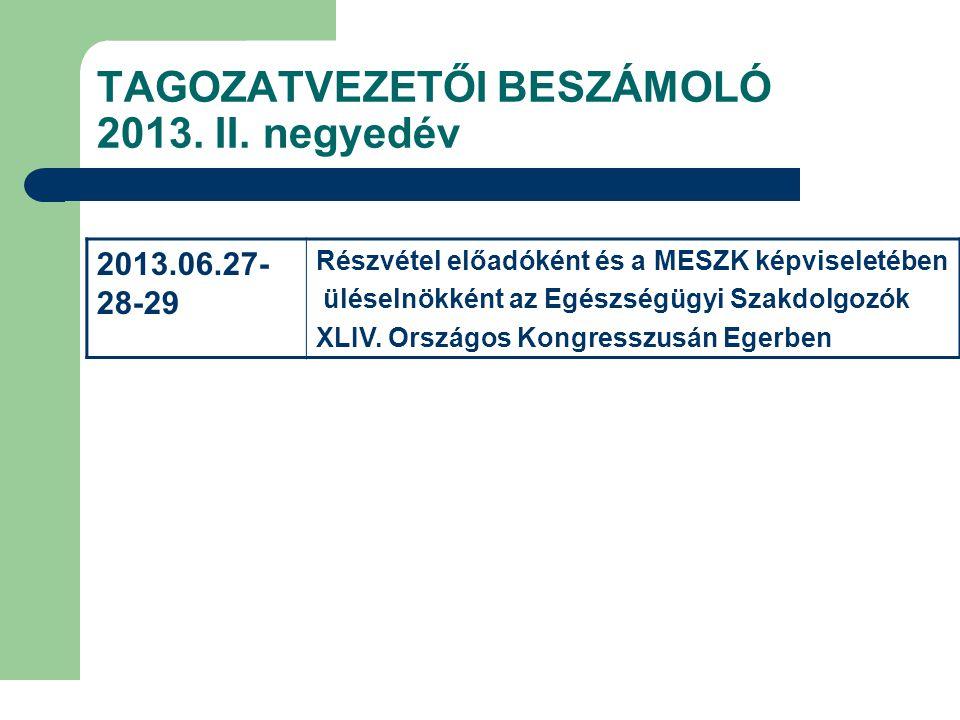 TAGOZATVEZETŐI BESZÁMOLÓ 2013. II. negyedév