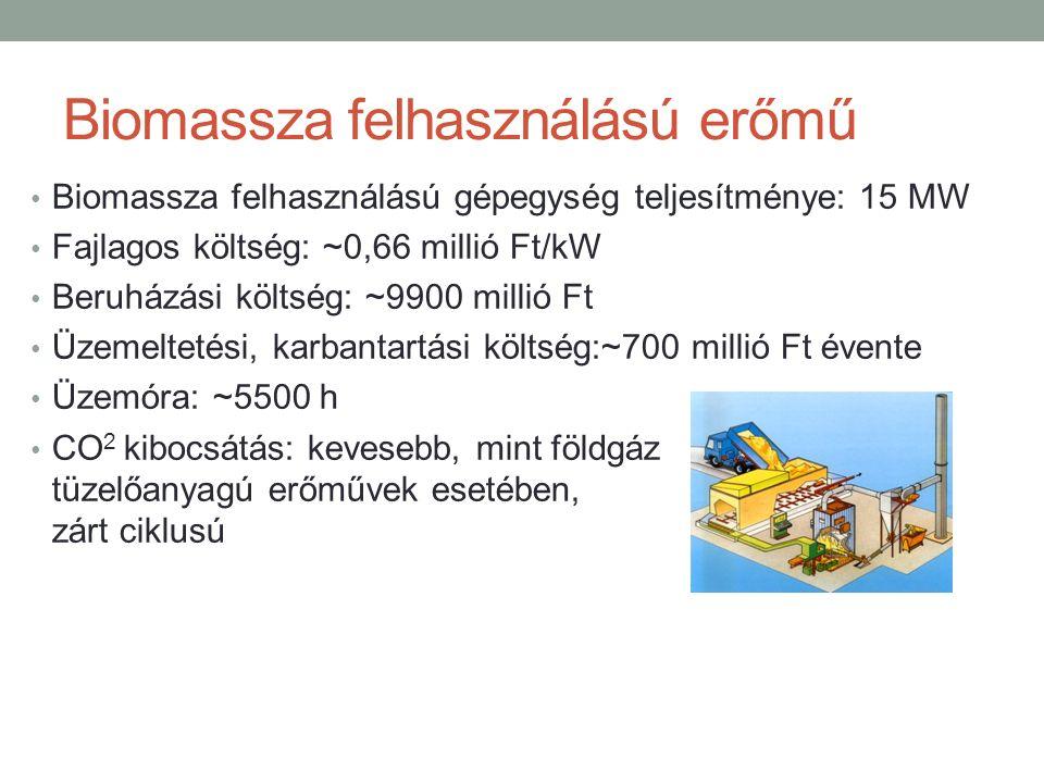 Biomassza felhasználású erőmű