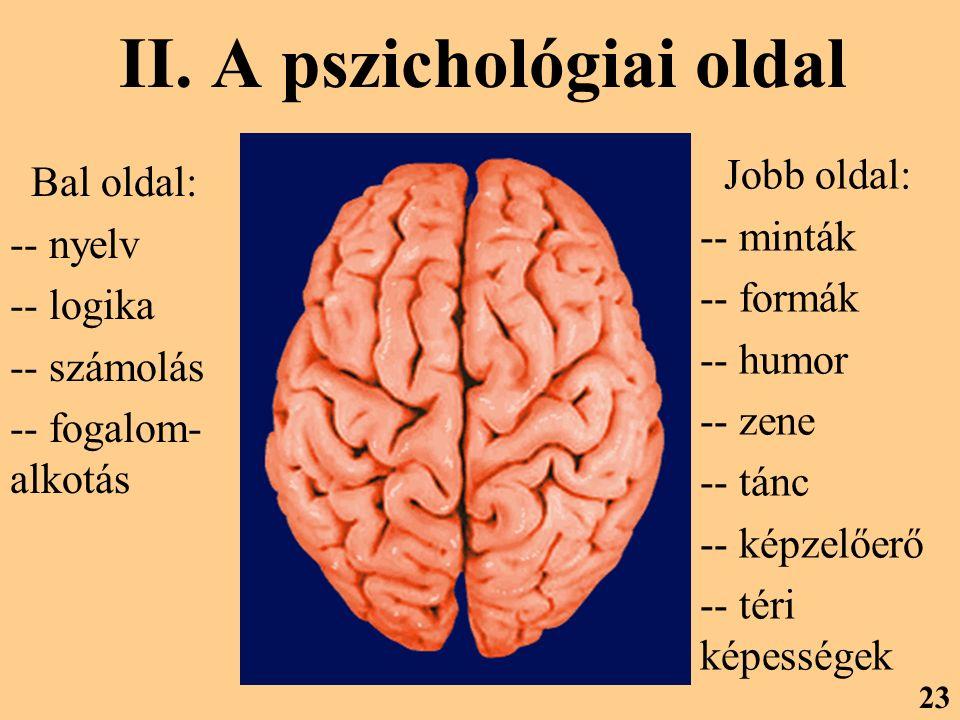 II. A pszichológiai oldal