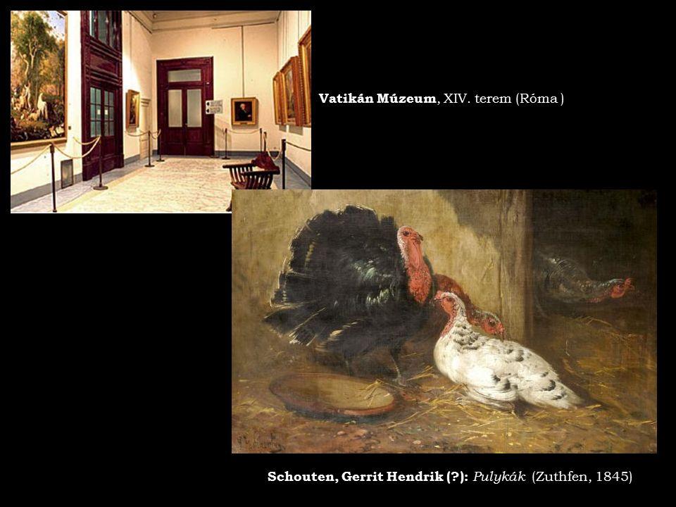 Vatikán Múzeum, XIV. terem (Róma )