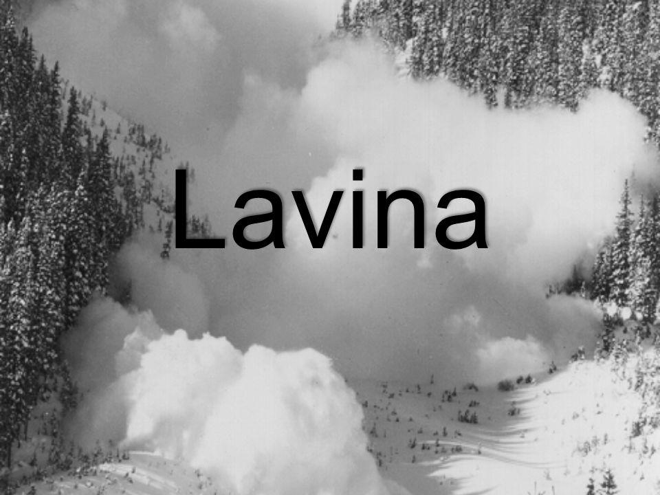 Lavina