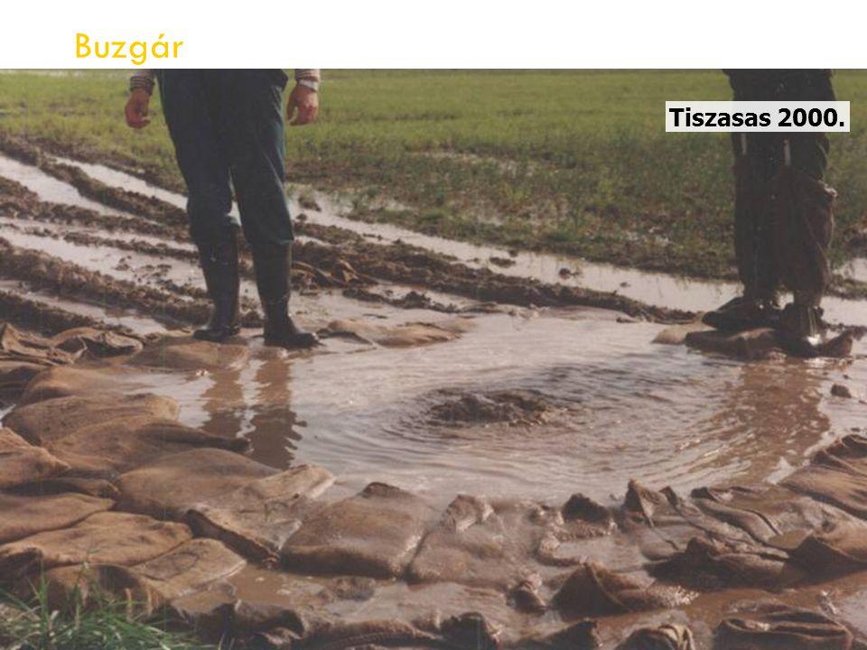 Buzgár Tiszasas 2000.