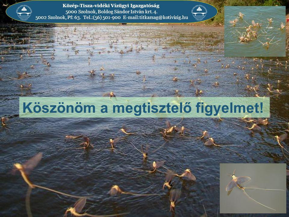 Közép-Tisza-vidéki Vízügyi Igazgatóság