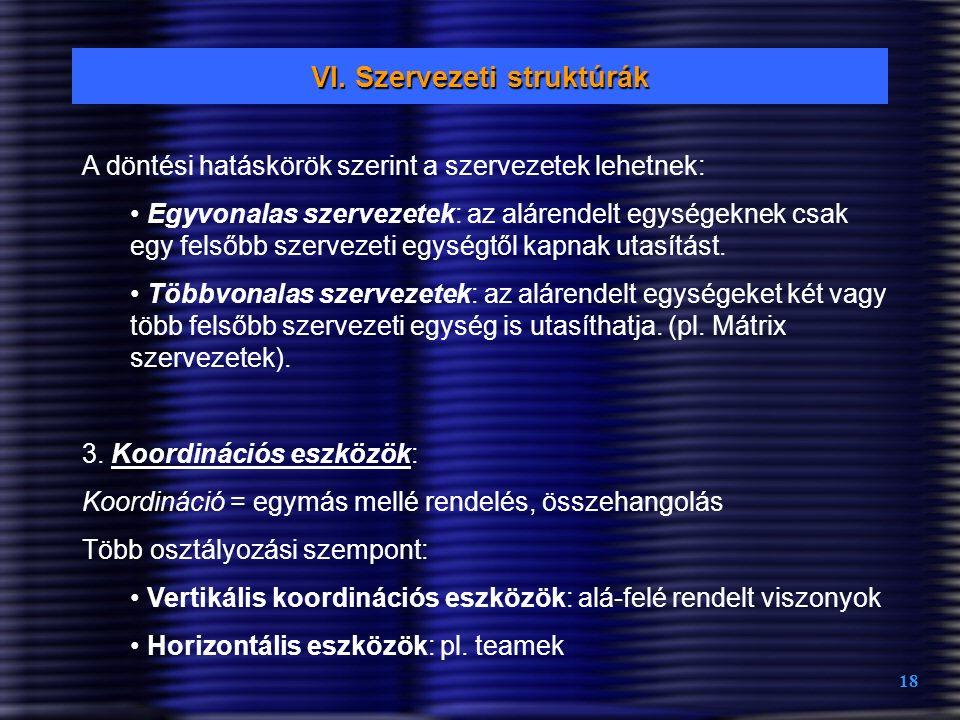 VI. Szervezeti struktúrák