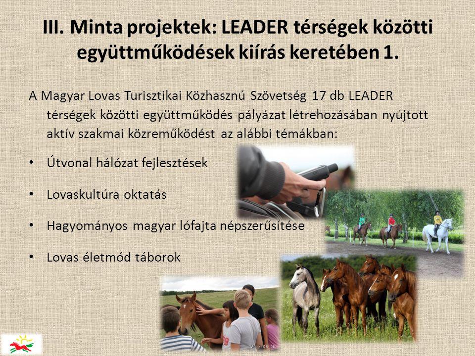 III. Minta projektek: LEADER térségek közötti együttműködések kiírás keretében 1.