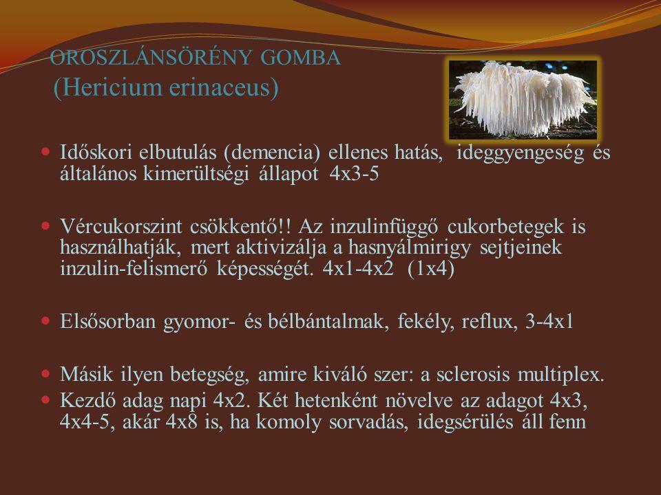 OROSZLÁNSÖRÉNY GOMBA (Hericium erinaceus)