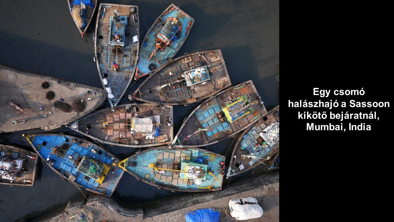 Egy csomó halászhajó a Sassoon kikötő bejáratnál, Mumbai, India