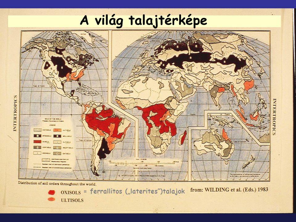 """A világ talajtérképe = ferrallitos (""""laterites )talajok"""