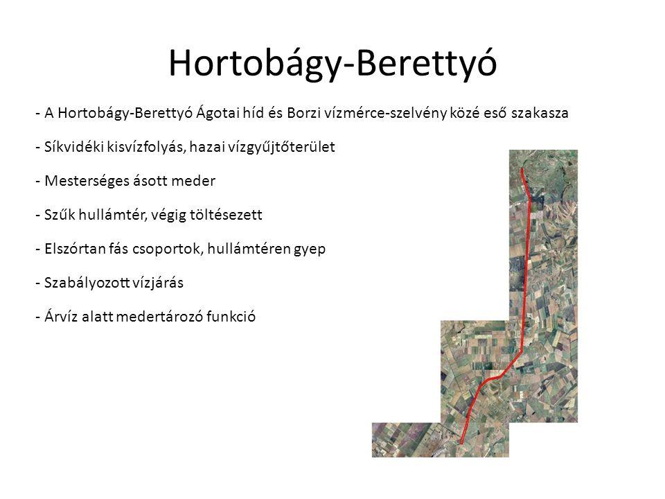Hortobágy-Berettyó - A Hortobágy-Berettyó Ágotai híd és Borzi vízmérce-szelvény közé eső szakasza. - Síkvidéki kisvízfolyás, hazai vízgyűjtőterület.